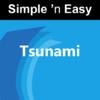 Quizmine.Com - Tsunami. artwork